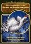 DVD-диск «Охотничьи просторы» выпуск №1