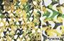 """Маскировочная сеть  3-D Digital Woodland Ultra-Lite (""""Лес"""") 2,4*3 м (CamoSystems) ПЛ-3"""