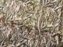 Сеть маскировочная North Way размер 3х1,5 м ткань оксфорд (цвет NW-2) арт.СП3015